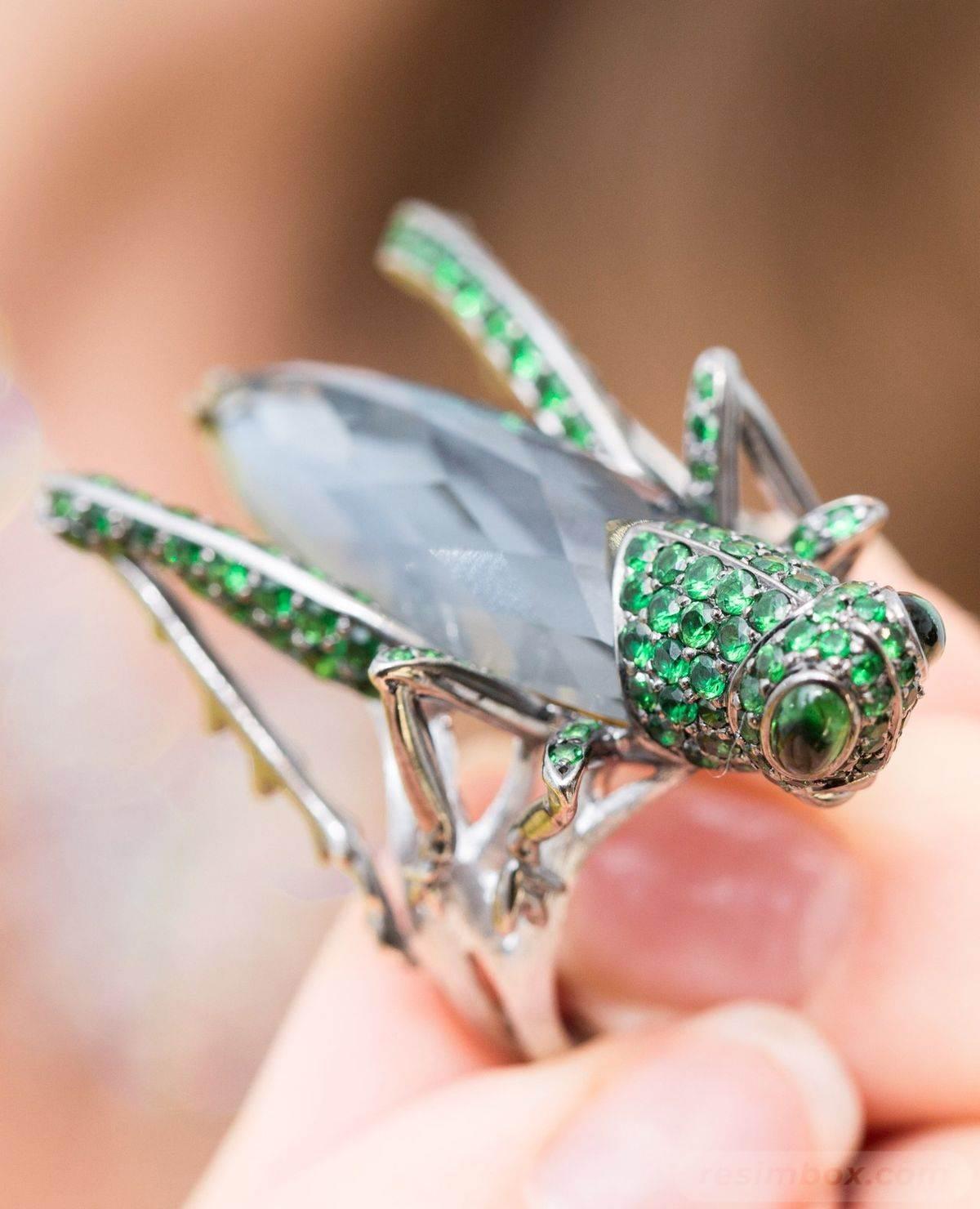 gemologue-animal-jewelry-curation-141652350766416198